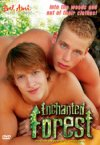 Bel Ami, Enchanted Forest
